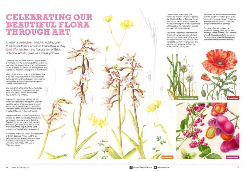 Botanical Art Worldwide Day Uk Society Of Botanical Artists